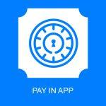 Платный вход в приложение